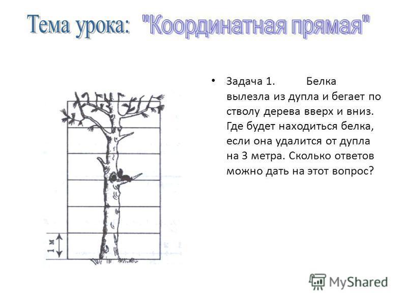 Задача 1. Белка вылезла из дупла и бегает по стволу дерева вверх и вниз. Где будет находиться белка, если она удалится от дупла на 3 метра. Сколько ответов можно дать на этот вопрос?