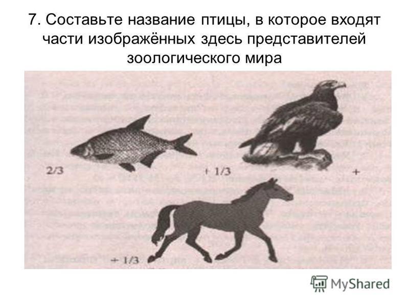 МЕСТО ТРИУМФ РОДИНА СЕМЬЯ СОРОКА