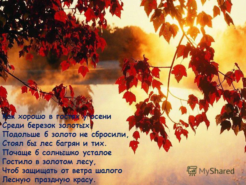 Как хорошо в гостях у осени Среди березок золотых. Подольше б золото не сбросили, Стоял бы лес багрян и тих. Почаще б солнышко усталое Гостило в золотом лесу, Чтоб защищать от ветра шалого Лесную праздную красу.