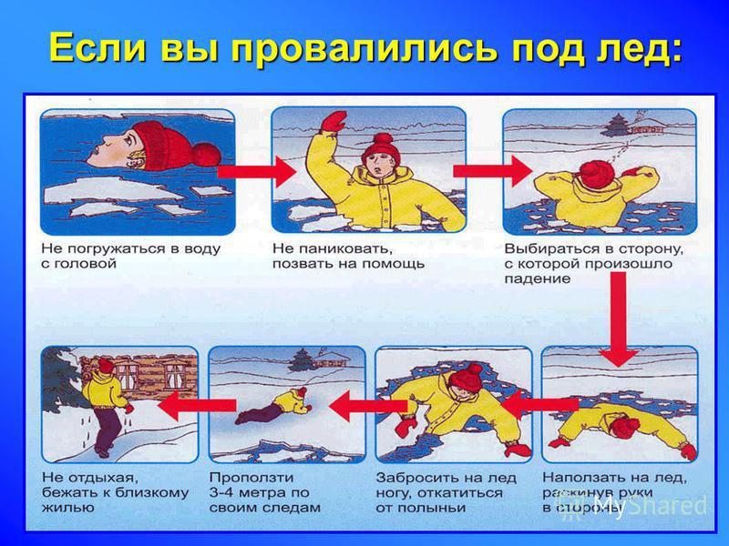 Если вы провалились под лед: Не паниковать.Не паниковать. Не наваливаться всем телом на кромку льда.Не наваливаться всем телом на кромку льда. Опереться локтем на лед и переместить тело в горизонтальное положение.Опереться локтем на лед и переместить