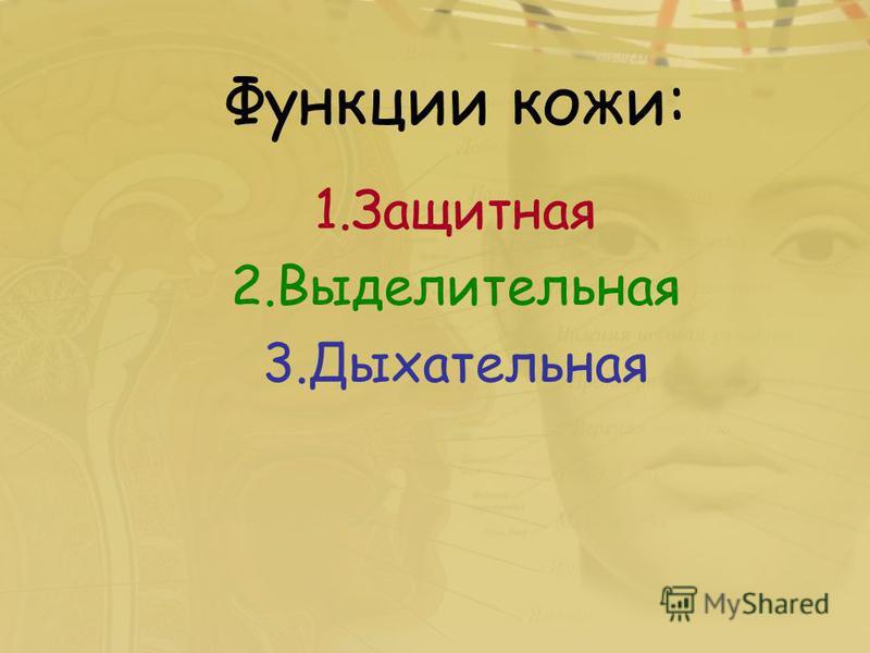 Функции кожи: 1. Защитная 2. Выделительная 3.Дыхательная