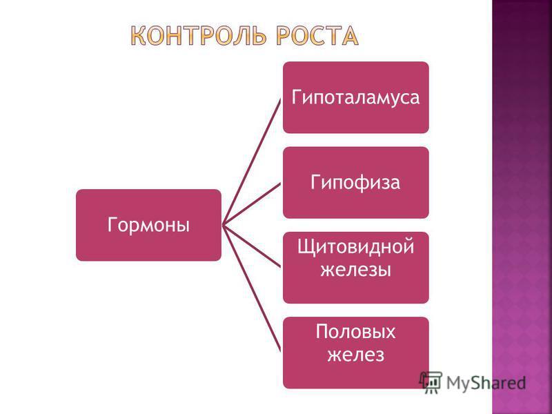 Гормоны ГипоталамусаГипофиза Щитовидной железы Половых желез