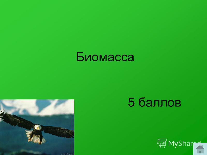 Биомасса 5 баллов