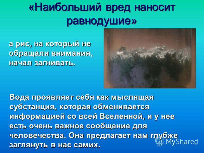«Наибольший вред наносит равнодушие» а рис, на который не обращали внимания, начал загнивать. Вода проявляет себя как мыслящая субстанция, которая обменивается информацией со всей Вселенной, и у нее есть очень важное сообщение для человечества. Она п