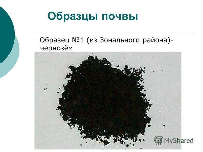 Образцы почвы Образец 1 (из Зонального района)- чернозём