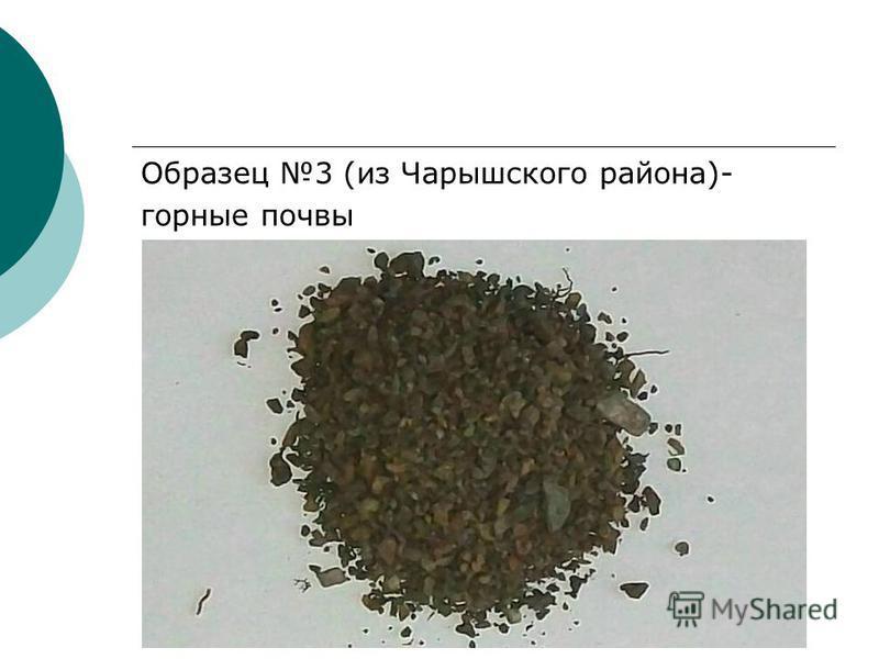 Образец 3 (из Чарышского района)- горные почвы