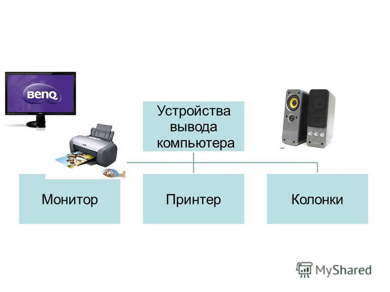 Устройства вывода компьютера Монитор ПринтерКолонки