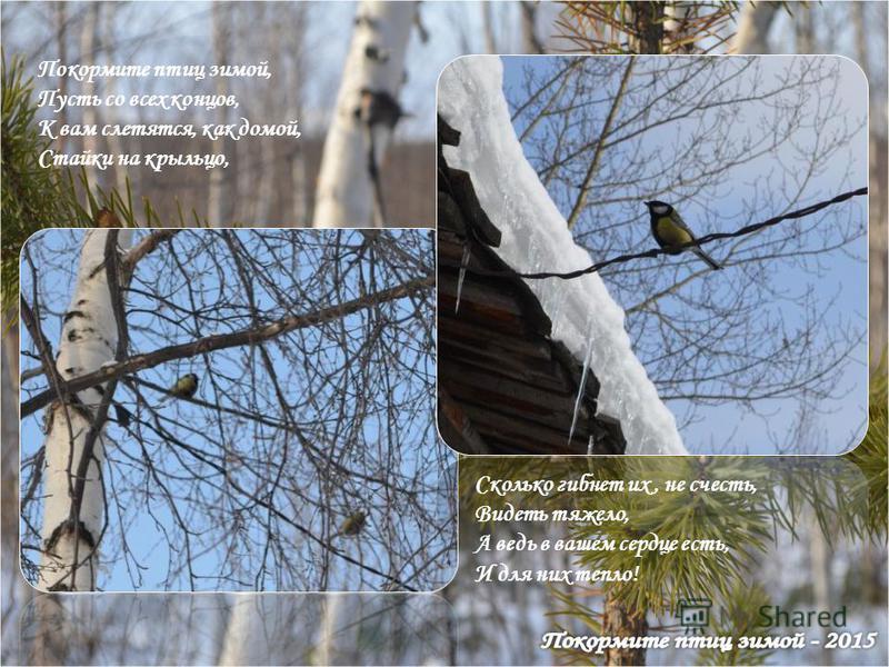 Покормите птиц зимой, Пусть со всех концов, К вам слетятся, как домой, Стайки на крыльцо, Сколько гибнет их, не счесть, Видеть тяжело, А ведь в вашем сердце есть, И для них тепло!