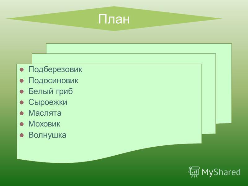 План Подберезовик Подосиновик Белый гриб Сыроежки Маслята Моховик Волнушка
