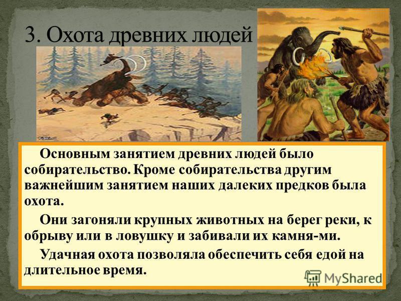 Основным занятием древних людей было собирательство. Кроме собирательства другим важнейшим занятием наших далеких предков была охота. Они загоняли крупных животных на берег реки, к обрыву или в ловушку и забивали их камня-ми. Удачная охота позволяла