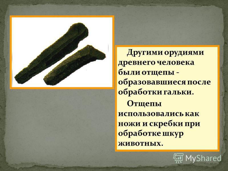 Другими орудиями древнего человека были отщепы - образовавшиеся после обработки гальки. Отщепы использовались как ножи и скребки при обработке шкур животных.
