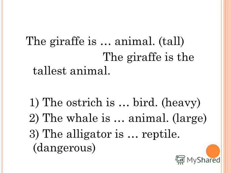 The giraffe is … animal. (tall) The giraffe is the tallest animal. 1) The ostrich is … bird. (heavy) 2) The whale is … animal. (large) 3) The alligator is … reptile. (dangerous)