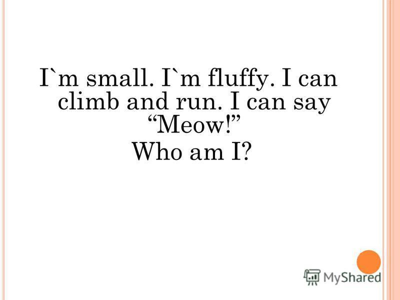 I`m small. I`m fluffy. I can climb and run. I can say Meow! Who am I?