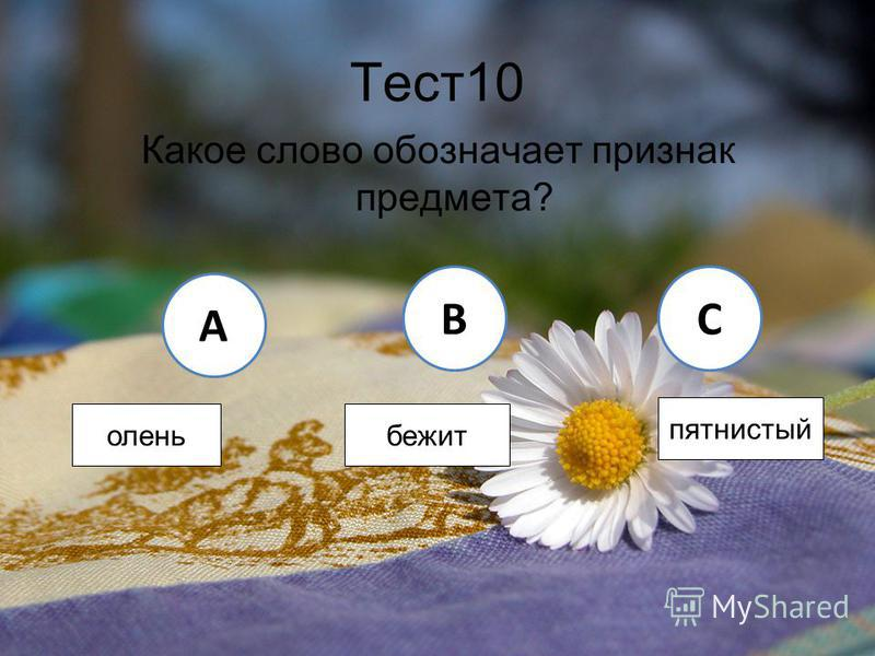 Тест 10 Какое слово обозначает признак предмета? A BC олень бежит пятнистый