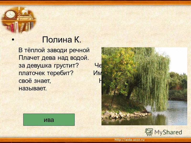 Полина К. В тёплой заводи речной Плачет дева над водой. Что за девушка грустит? Чей платочек теребит? Имя своё знает, Но не называет. ива