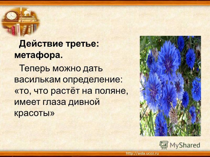 Действие третье: метафора. Теперь можно дать василькам определение: «то, что растёт на поляне, имеет глаза дивной красоты»
