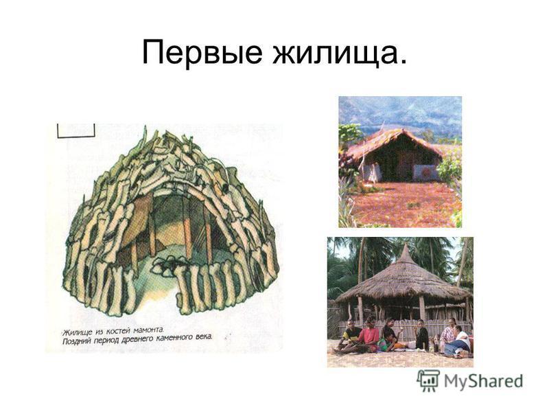 Первые жилища.