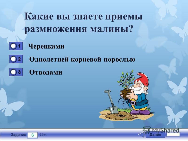 Далее 6 Задание 2 бал. 1111 2222 3333 Какие вы знаете приемы размножения малины? Черенками Однолетней корневой порослью Отводами