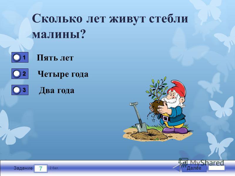 Далее 7 Задание 2 бал. 1111 2222 3333 Сколько лет живут стебли малины? Пять лет Четыре года Два года