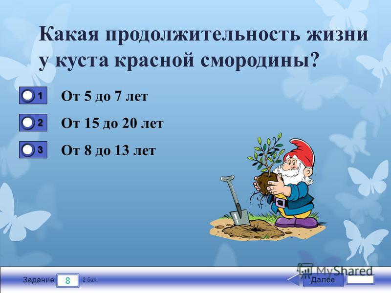 Далее 8 Задание 2 бал. 1111 2222 3333 Какая продолжительность жизни у куста красной смородины? От 5 до 7 лет От 15 до 20 лет От 8 до 13 лет
