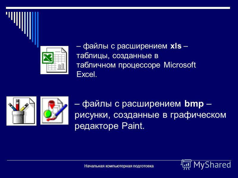 Начальная компьютерная подготовка – файлы с расширением xls – таблицы, созданные в табличном процессоре Microsoft Excel. – файлы с расширением bmp – рисунки, созданные в графическом редакторе Paint.
