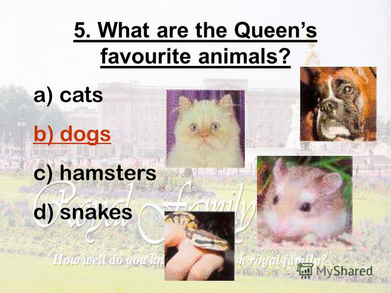 5. What are the Queens favourite animals? a) cats b) dogs c) hamsters d) snakes