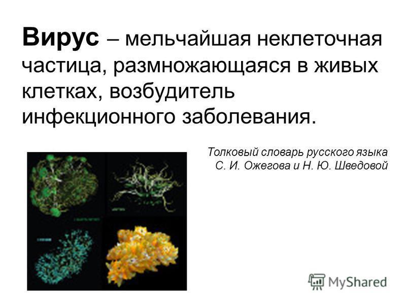 Вирус – мельчайшая неклеточная частица, размножающаяся в живых клетках, возбудитель инфекционного заболевания. Толковый словарь русского языка С. И. Ожегова и Н. Ю. Шведовой