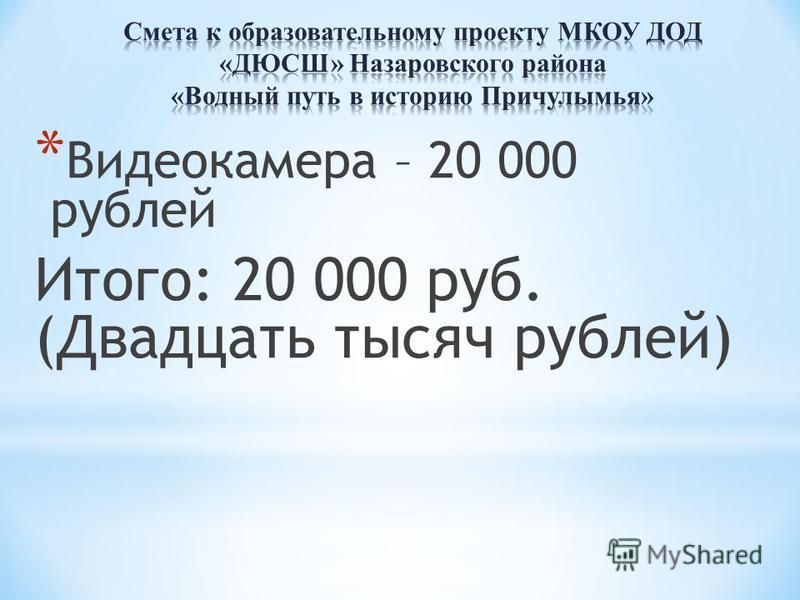 * Видеокамера – 20 000 рублей Итого: 20 000 руб. (Двадцать тысяч рублей)