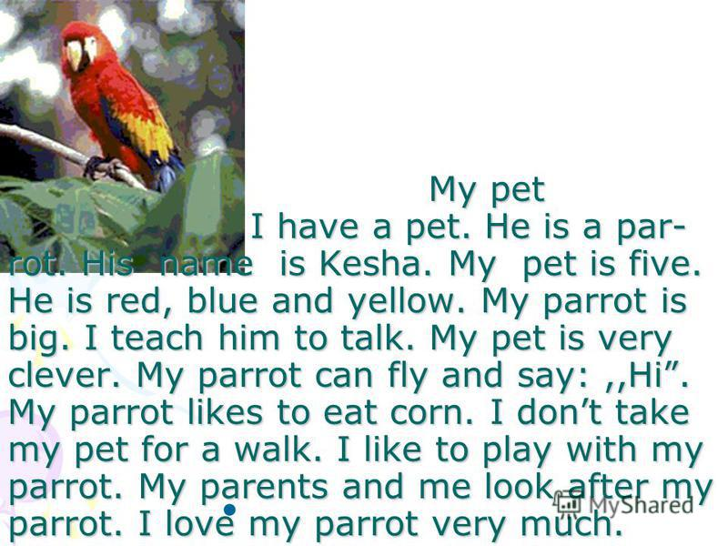 My pet I have a pet. He is a par- rot. His name is Kesha. My pet is five. He is red, blue and yellow. My parrot is big. I teach him to talk. My pet is very clever. My parrot can fly and say:,,Hi. My parrot likes to eat corn. I dont take my pet for a