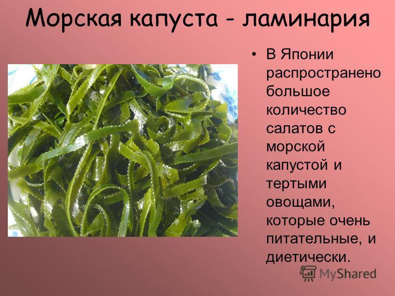 Морская капуста - ламинария В Японии распространено большое количество салатов с морской капустой и тертыми овощами, которые очень питательные, и диетически.