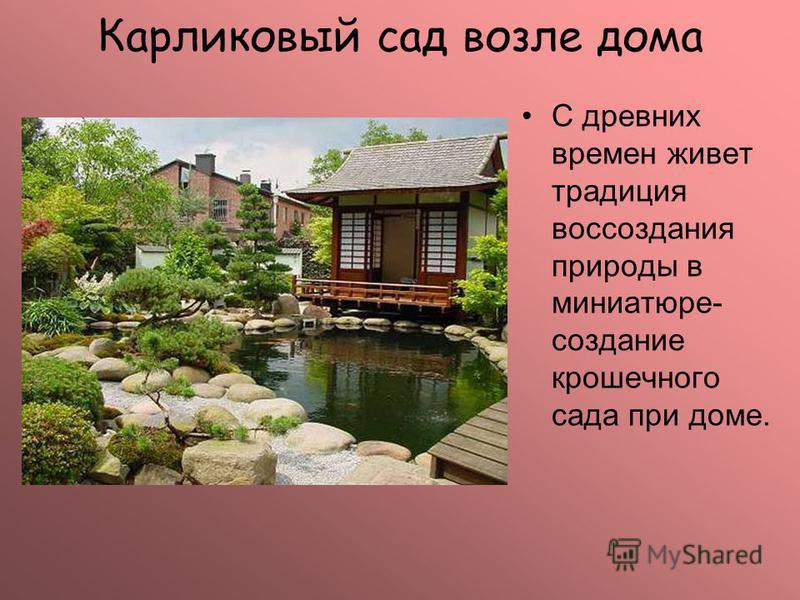 Карликовый сад возле дома С древних времен живет традиция воссоздания природы в миниатюре- создание крошечного сада при доме.