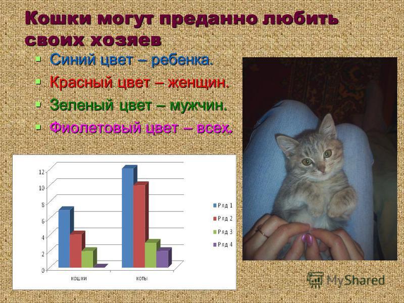 Кошки могут преданно любить своих хозяев Синий цвет – ребенка. Синий цвет – ребенка. Красный цвет – женщин. Красный цвет – женщин. Зеленый цвет – мужчин. Зеленый цвет – мужчин. Фиолетовый цвет – всех. Фиолетовый цвет – всех.