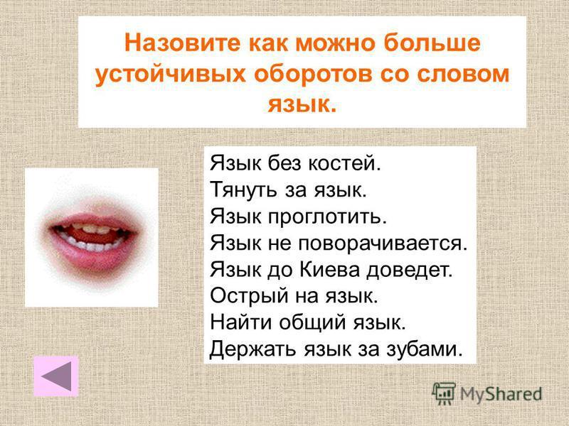 Назовите как можно больше устойчивых оборотов со словом язык. Язык без костей. Тянуть за язык. Язык проглотить. Язык не поворачивается. Язык до Киева доведет. Острый на язык. Найти общий язык. Держать язык за зубами.