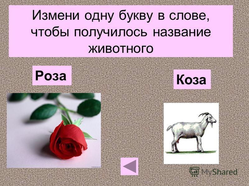 Измени одну букву в слове, чтобы получилось название животного Роза Коза