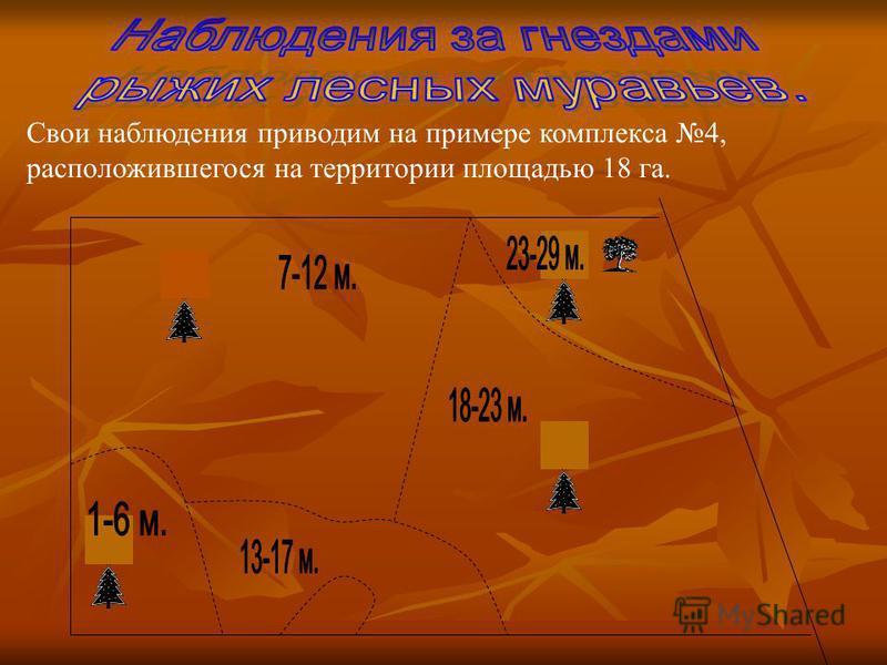 Свои наблюдения приводим на примере комплекса 4, расположившегося на территории площадью 18 га.