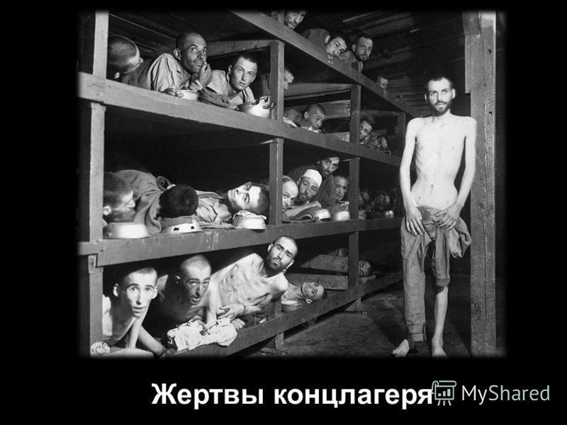 Жертвы концлагеря