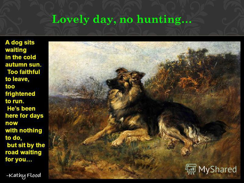Lovely day, no hunting… A dog sits waiting in the cold autumn sun. Too faithful to leave, too frightened to run. Hes been here for days now with nothing to do, but sit by the road waiting for you… -Kathy Flood