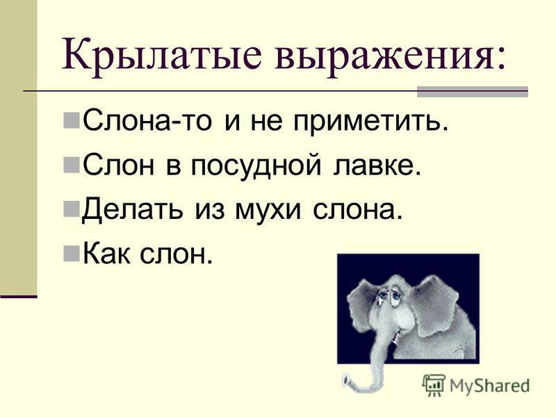 Крылатые выражения: Слона-то и не приметить. Слон в посудной лавке. Делать из мухи слона. Как слон.