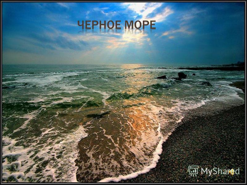 Черноморское побережье Кавказа – субтропическая зона. Южный берег Крыма и побережье защищены горами от холодных северных ветров Значительное влияние на погоду над Чёрным морем оказывает Атлантический океан. На северно-восточном побережье моря невысок