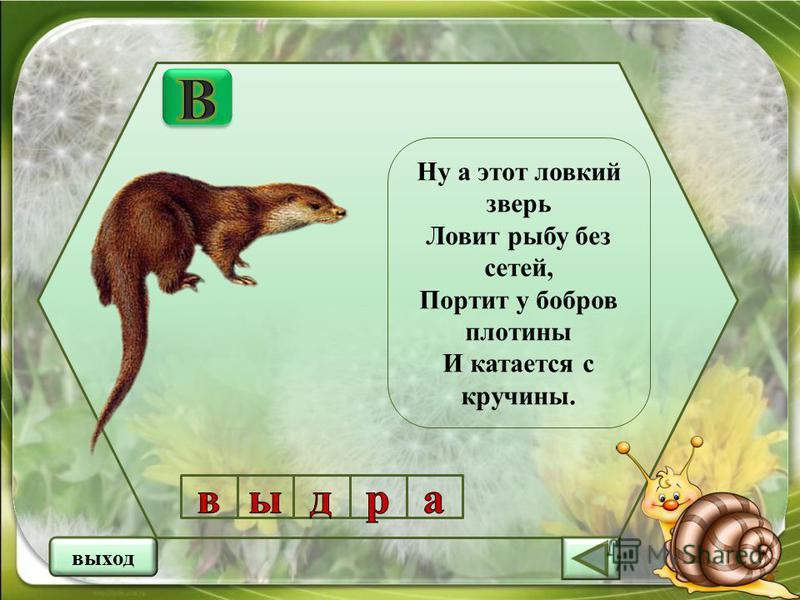 Ну а этот ловкий зверь Ловит рыбу без сетей, Портит у бобров плотины И катается с кручины. выход