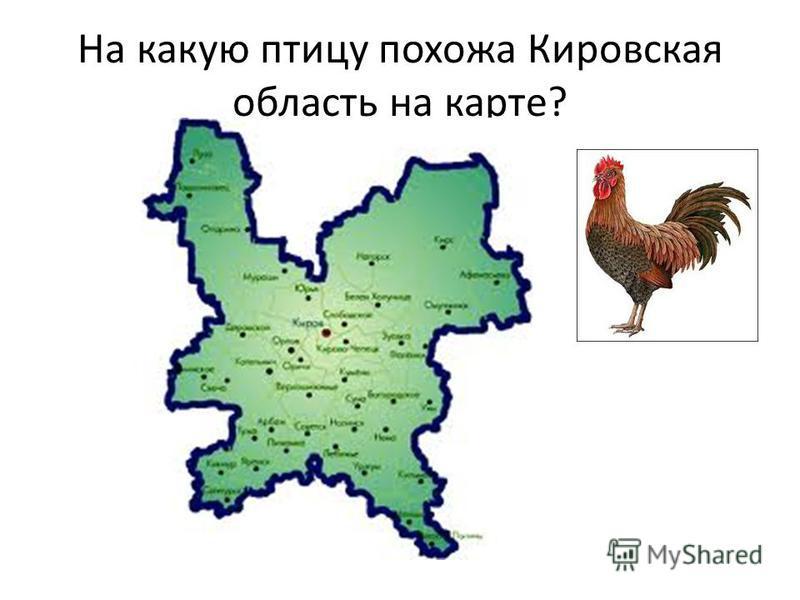 На какую птицу похожа Кировская область на карте?