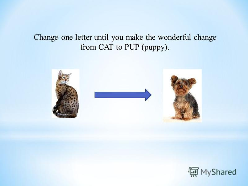 Change one letter until you make the wonderful change from CAT to PUP (puppy).