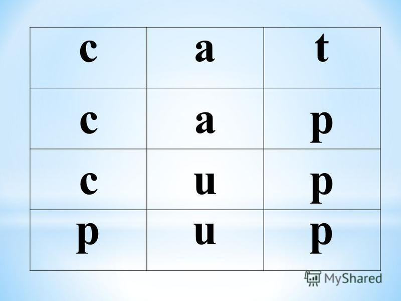 саt cap cup pup