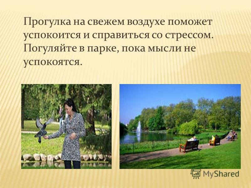 Прогулка на свежем воздухе поможет успокоится и справиться со стрессом. Погуляйте в парке, пока мысли не успокоятся.