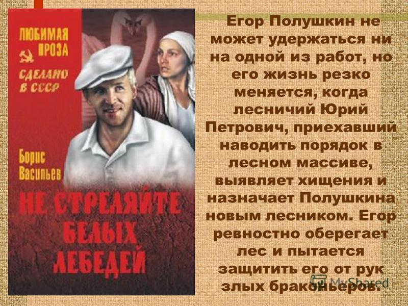 Егор Полушкин не может удержаться ни на одной из работ, но его жизнь резко меняется, когда лесничий Юрий Петрович, приехавший наводить порядок в лесном массиве, выявляет хищения и назначает Полушкина новым лесником. Егор ревностно оберегает лес и пыт