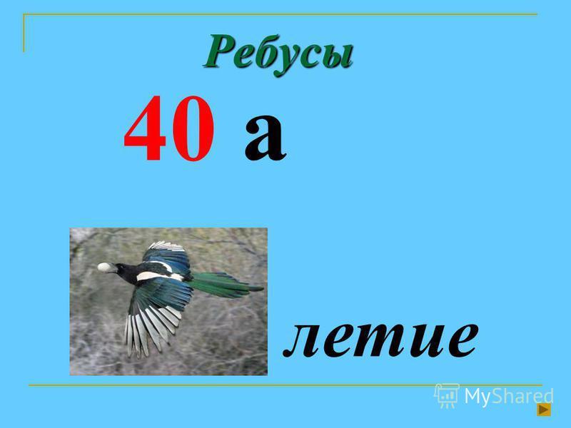 Ребусы 40 а летие