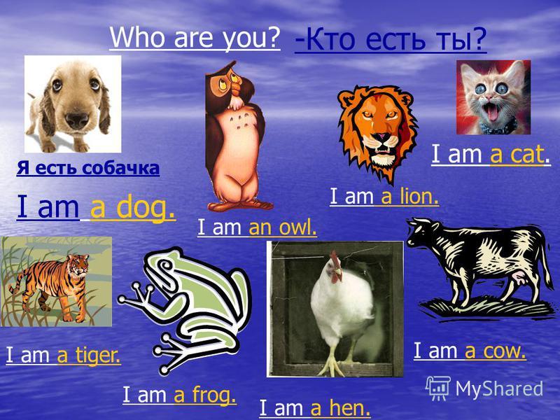 Who are you? I am a dog. I am an owl. I am a lion. I am a cat. I am a cow. I am a hen. I am a frog. I am a tiger. -Кто есть ты? Я есть собачка