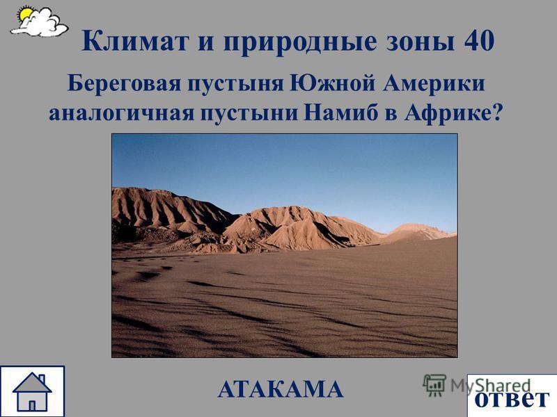 Климат и природные зоны 40 ответ Береговая пустыня Южной Америки аналогичная пустыни Намиб в Африке? АТАКАМА