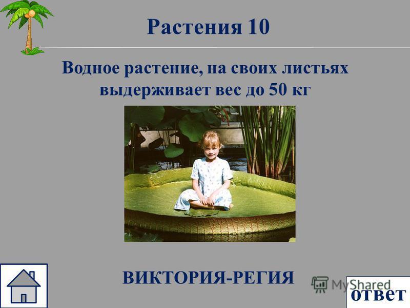 Растения 10 ответ Водное растение, на своих листьях выдерживает вес до 50 кг ВИКТОРИЯ-РЕГИЯ