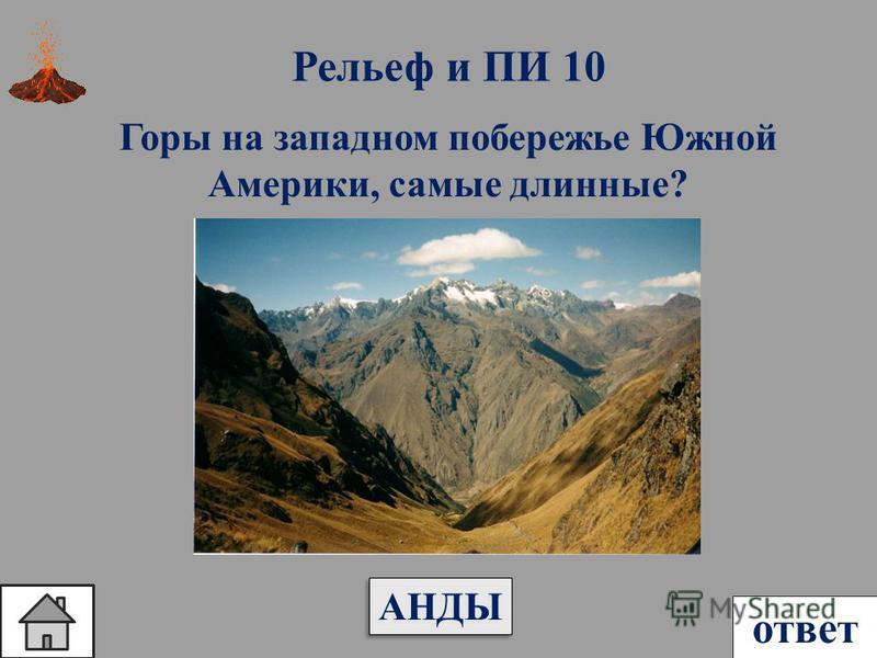 Рельеф и ПИ 10 ответ Горы на западном побережье Южной Америки, самые длинные? АНДЫ
